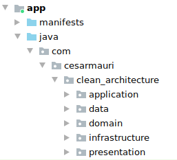 Screenshot showing five folders in the root of the project: application, data, domain, infrastructure and presentation